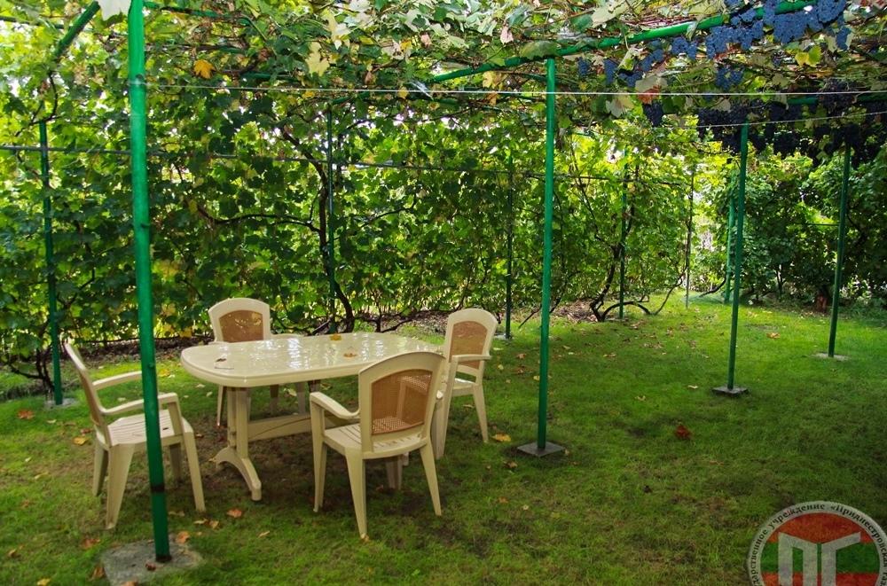 К услугам гостей комфортабельные комнаты, парилка, обшитая липой и летний бассейн