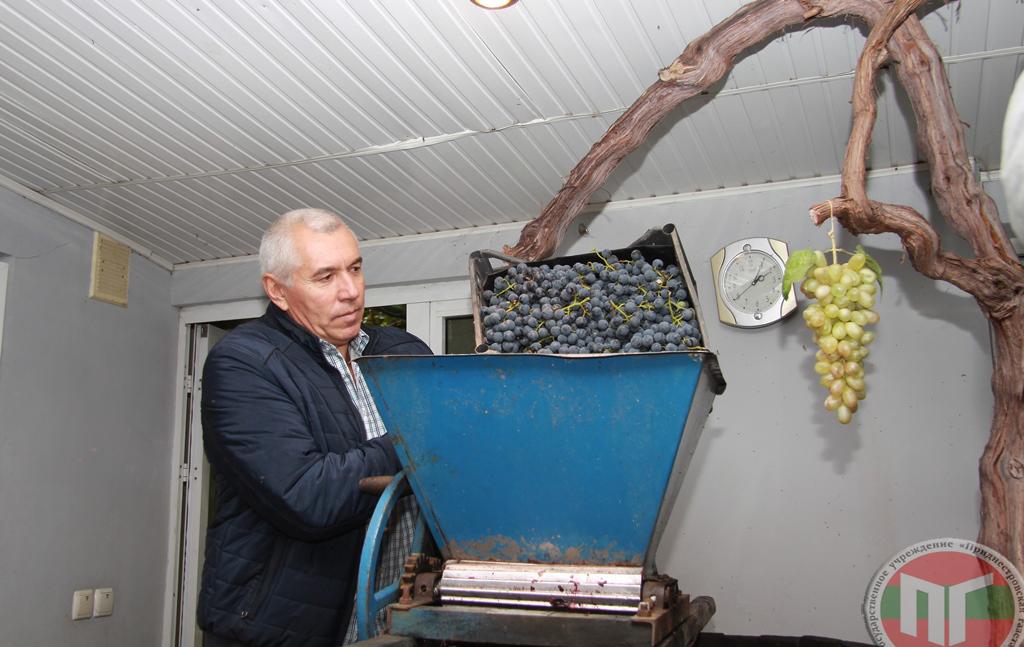 Николай предложил поучаствовать в изготовлении домашнего вина и провел своеобразный мастер-класс по старинной технологии