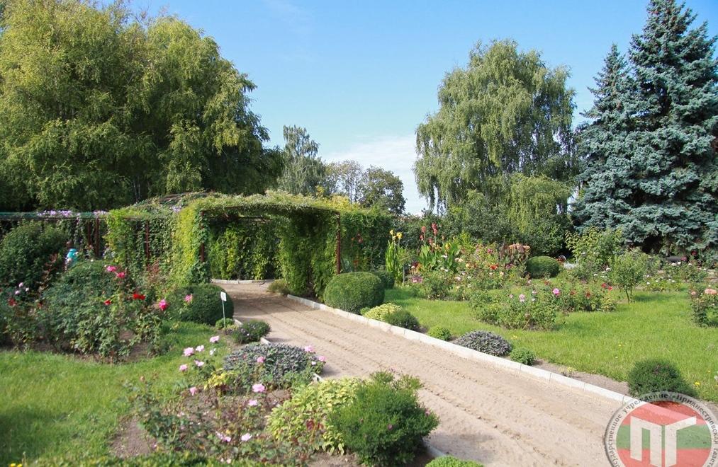 Ботанический сад является одной из главных достопримечательностей не только Тирасполя, но и всего Приднестровья