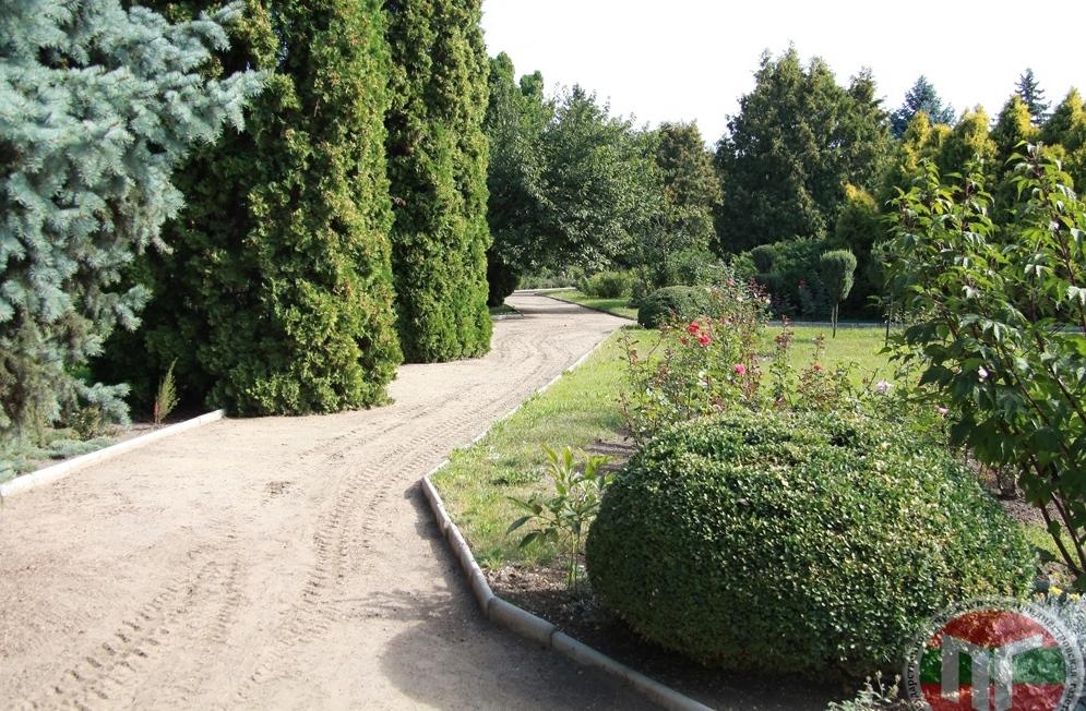 Рождение неповторимого парка осуществлялось поэтапно, начиная с 1959 года