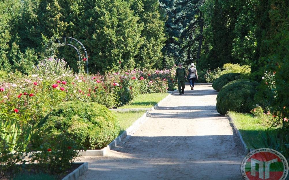 На этой территории разместились дендрологический парк, розарий, участки степной растительности, декоративных кустарников, питомник с коллекцией цветочно-декоративных растений, редких пищевых, ароматических и лекарственных растений